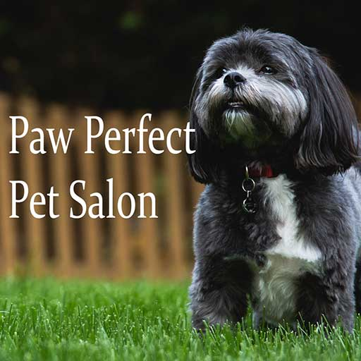 Paw Perfect Pet Salon - Cumming, GA